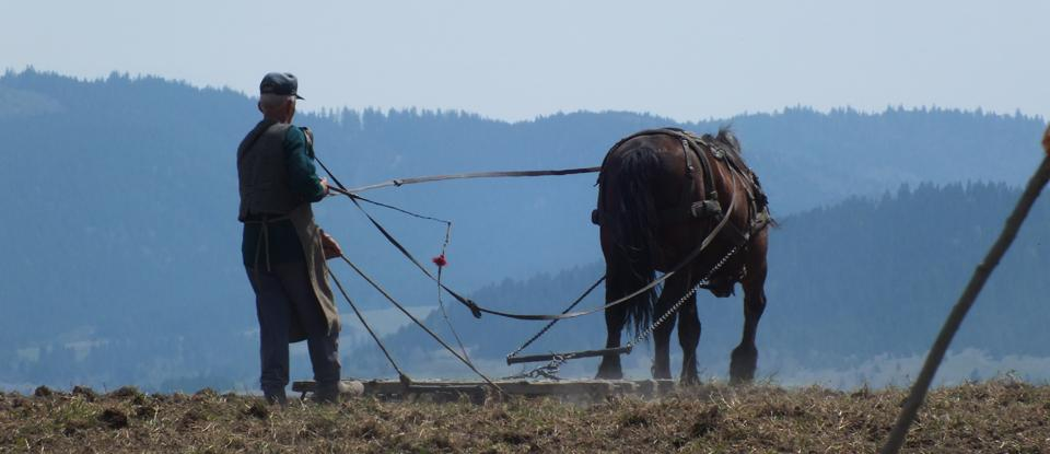 Releationship between MAN and NATURE in the Lower Ciuc Basin